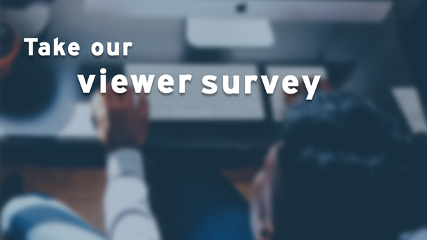 American Black Journal viewer survey