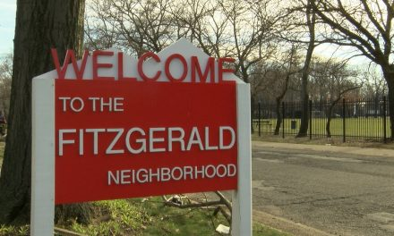 A closer look at the Fitzgerald community
