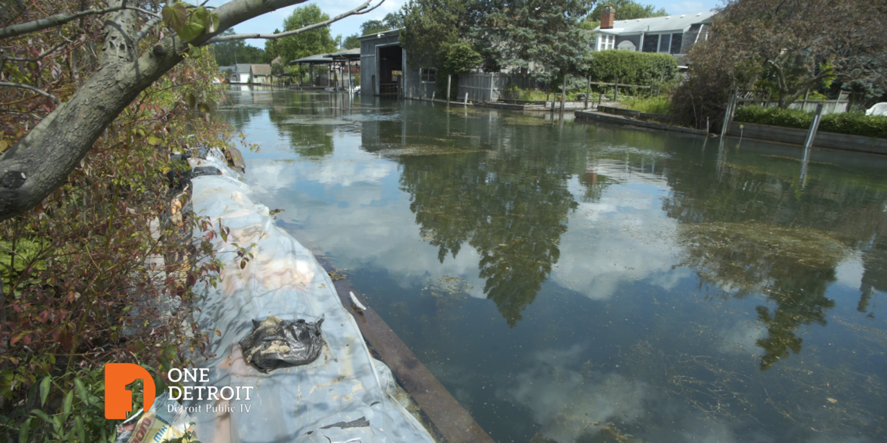 Record high water on Detroit's East Side